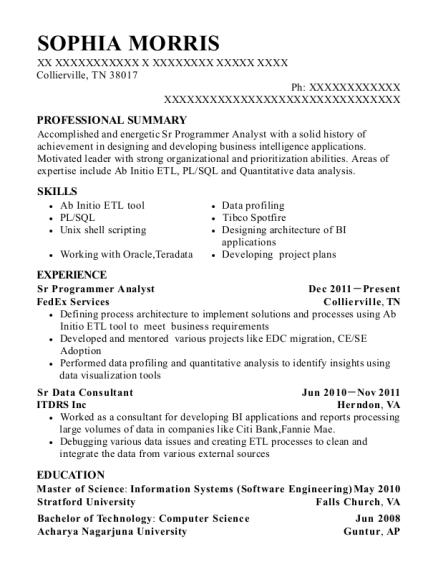 Best Sr Programmer Analyst Resumes Resumehelp