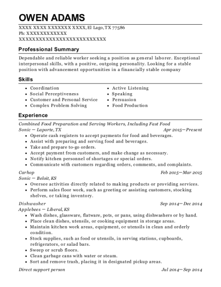 best direct support person resumes