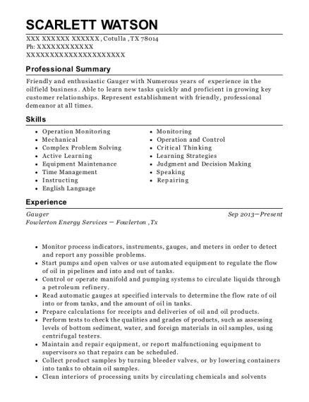 Best Gauger Resumes   ResumeHelp