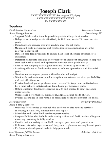 Best And Put To Light Resumes | ResumeHelp