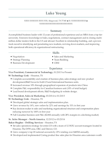 W-technology Link Vice President, Commercial & Technology Resume ...