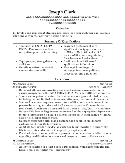 Wonderful View Resume