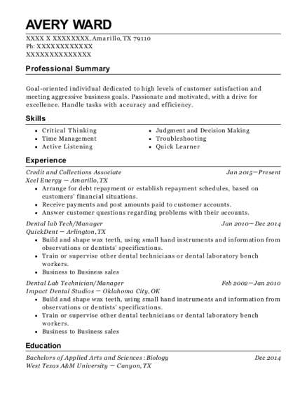 Xcel Energy Credit And Collections Associate Resume Sample ...