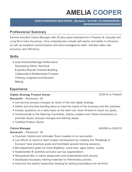 view resume digital strategy product owner product owner resume