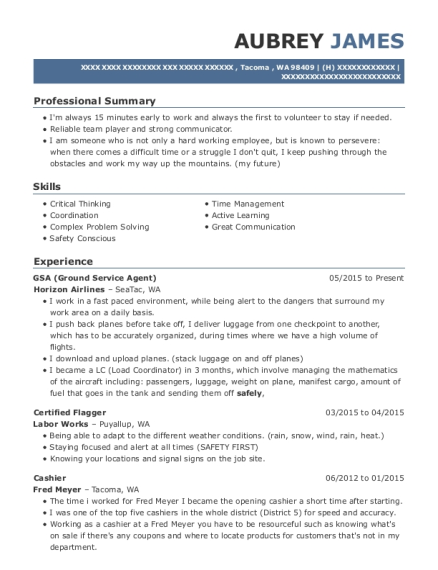 Advantage Resume Service Review