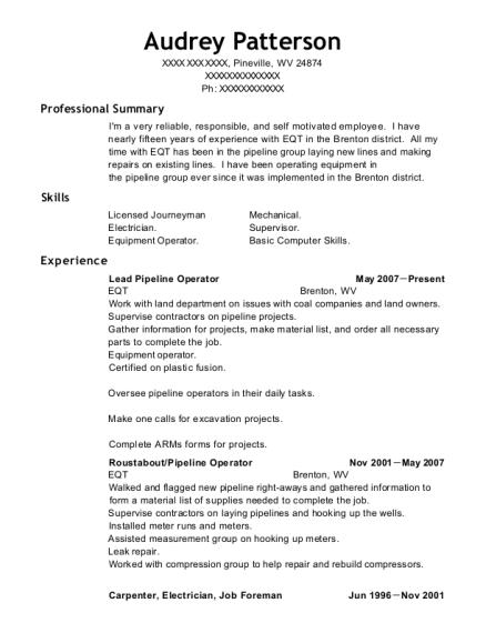 Best Pipeline Operator Resumes | ResumeHelp