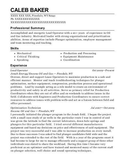 Jonah Energy Lead Operator Resume Sample